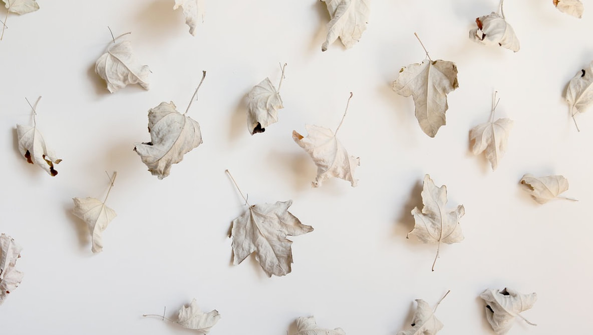 White leaves installation